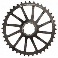 Pignone WolfTooth Giant Cog